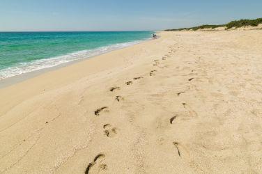 46 spiaggia Campomarino